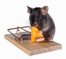 ratos - métodos de controle